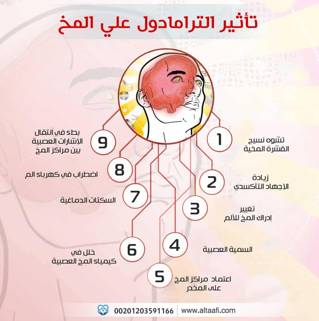 تأثير الترامادول علي المخ