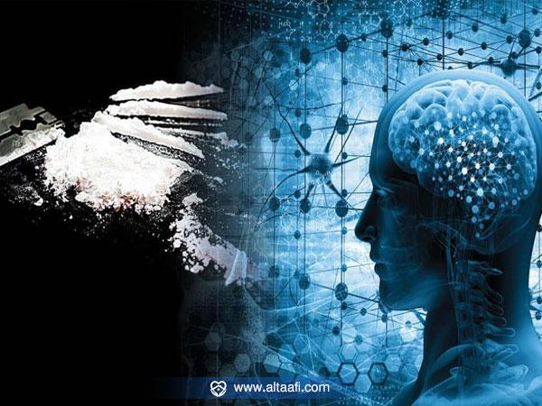 مفعول الكوكايين على المخ والجهاز العصبي-الكوكايين-على-المخ-والجهاز-العصبي
